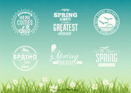 Free Spring Typographic Vector Design Set