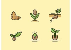 Conjunto de iconos de vector de semillas