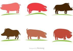 Conjunto de cerdo de vector