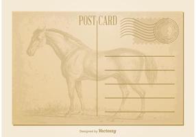 De vintage Prentbriefkaar van het Paard