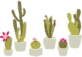 Hand Drawn Potted Cactus vector
