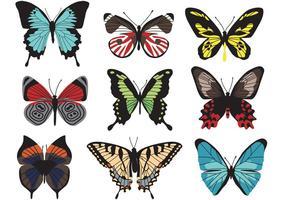 Vetores de borboleta