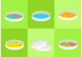 Petri Dish Vectors