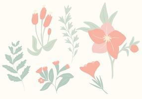 Vecteurs botaniques dessinés à la main