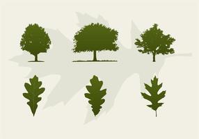 Eiken Bomen En Bladeren Vector Silhouetten