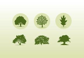 Various Oak Trees Icons And Silhouettes vector