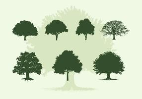 Various Oak Trees Vector Silhouettes Free Download