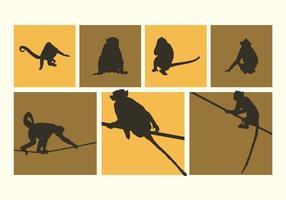 Il vario vettore delle siluette delle scimmie libera