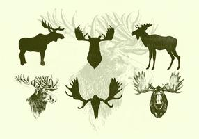 Standing Moose and Moose Heads Vector Silhouettes
