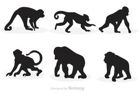 Monkey Silhouette Vektoren