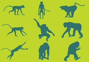 Monkey Silhouetten Vektoren