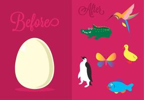 Vector Illustration of Different Oviparous Animals