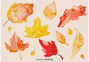 Watercolour Autumn Leaves vector
