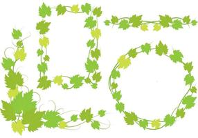 Ivy Vine Leaves Designs vector
