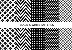 Black and White Pattern Set vector