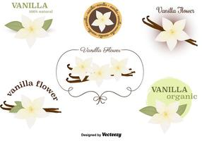 Vanille-Blumen-Vektoren-Set vektor