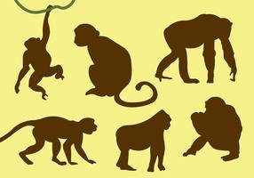 Vector Collection of Monkey Silhouettes