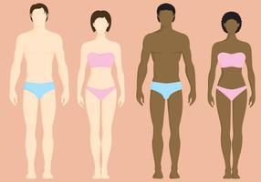 Frauen und Männer Vektoren