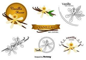 Vaniljblomma vektorer Set