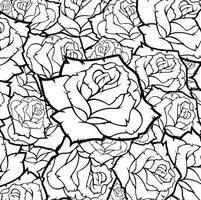 Rose Flower Vector Background Svartvit