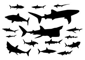 Vettori di sagoma di squalo