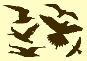 Insieme vettoriale di sagome di uccelli volanti