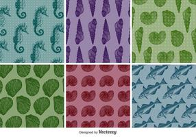 Vintage Aquatic Patterns