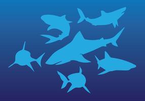Shark Silhouette Set