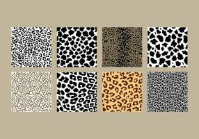 Pacote de impressão Leopard