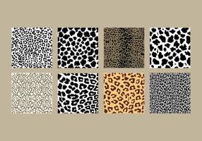 Leopard-Druckpaket