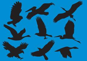 Wildfowl E Big Bird Silhouette Vectors