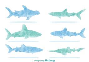 Vetores da silhueta do tubarão da aguarela