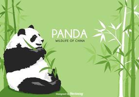 vettore di orso panda