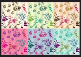 Vintage Berries Patterns vector