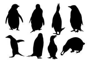 Vecteur libre de silhouette de pingouin