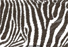 Fundo preto e branco da zebra vetor