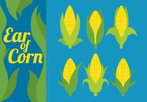 Vetores de espiga de milho