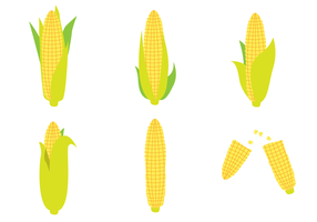 Ear Of Corn Vector Set