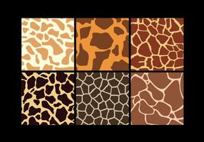 Conjunto de vectores de impresión de jirafa