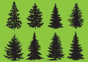 Vetores de árvore de pinheiro