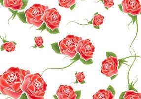 Vecteur de fond de roses