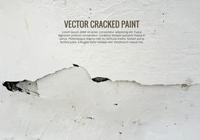 Vector de pintura agrietada