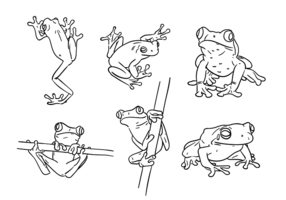 Scribble Green Tree Frog Vectors