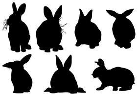Vector conejo silueta libre