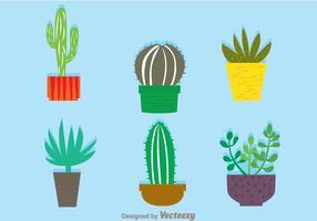 Cactus En Un Vectores De Pote