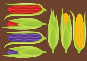 Orejas de vectores de maíz