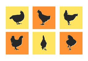 Poulet Slihouettes Vector Illustrations