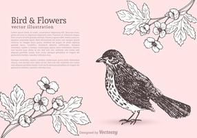 Free Bird And Flowers Vector