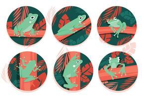 Green Tree Frog Vectors