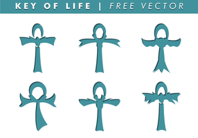 Key of Life Free Vector